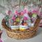 Wielkanocne Palmy zostały nagrodzone